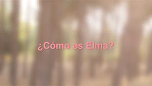 Elma-testimonios